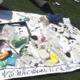 マイクロプラスチックによる海洋汚染